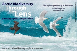 Arctic Biodiversity Through the Lens Photography Competition 2018 .jpg